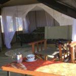ThornTree camp - Accomodation inside