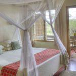 Ndutu Safari Lodge - Room