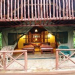 Kibale Forest Camp - tent