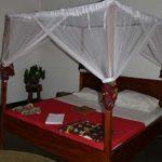 Honey Badge Lodge - room