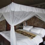 Mbalageti Lodge - room